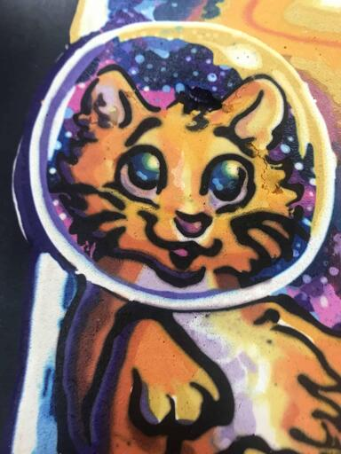 Galaxy Kitten Face Close-up