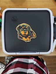 Rottweiler Pancake Art
