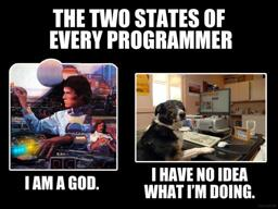 A meme describing the two states of being a programmer. A God or a cluess dog.